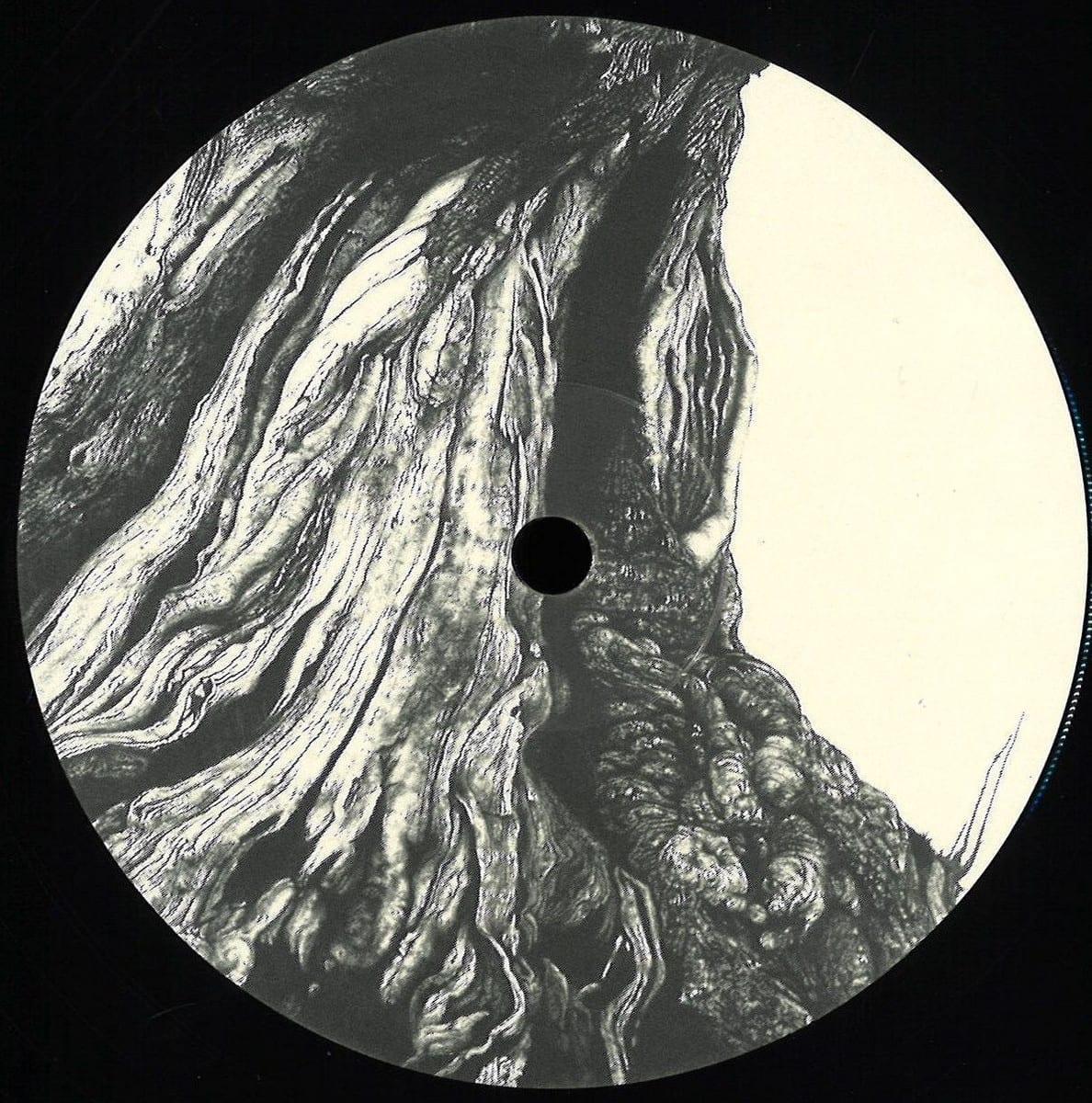 Mancini, Tijn - Wogglebug EP [Vuew] 1