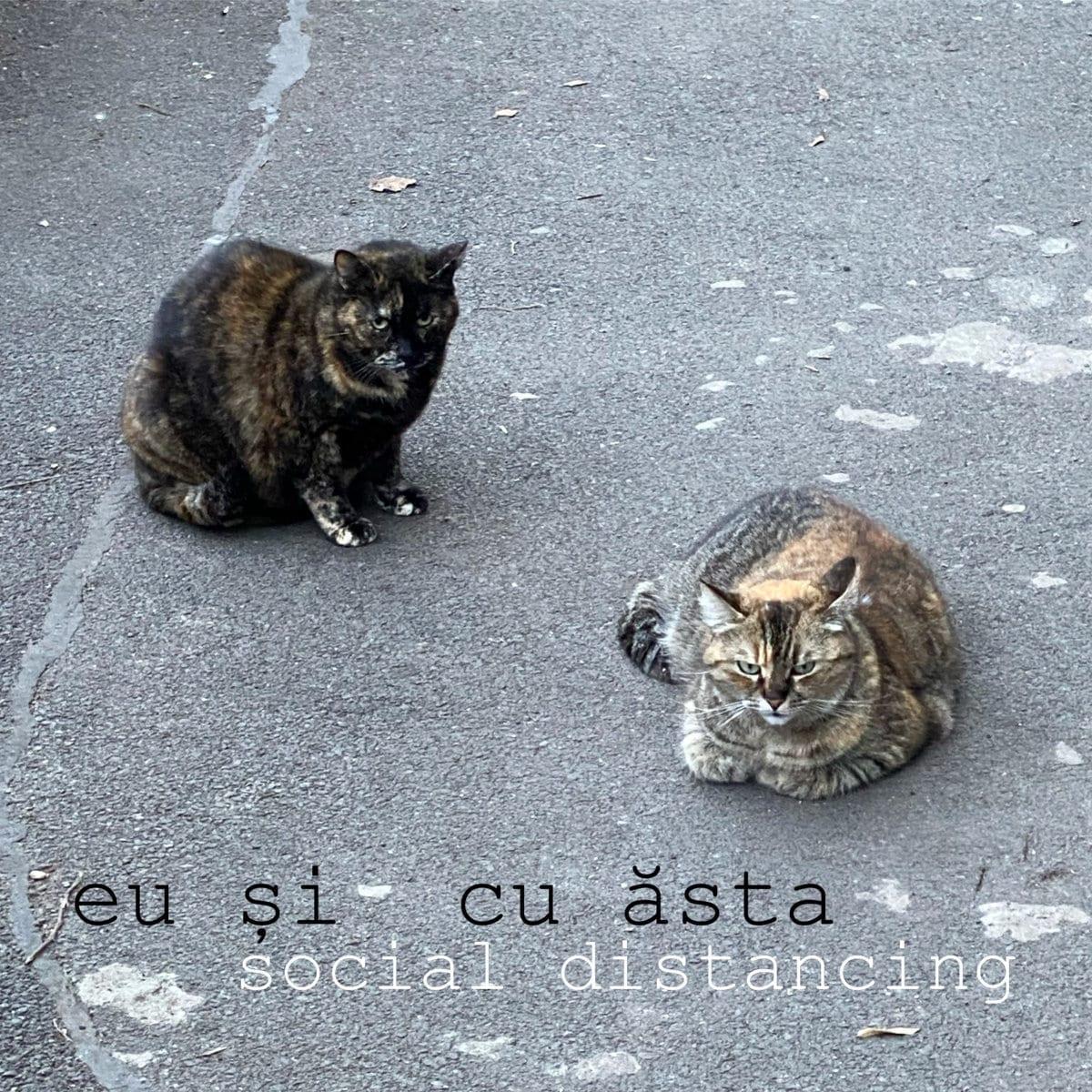 Eu și cu ăsta (Kozo & Andrei Ciubuc) - Social Distancing LP