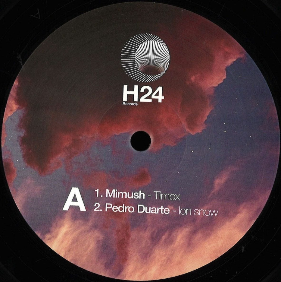 Various - H24001 [H24 Records]