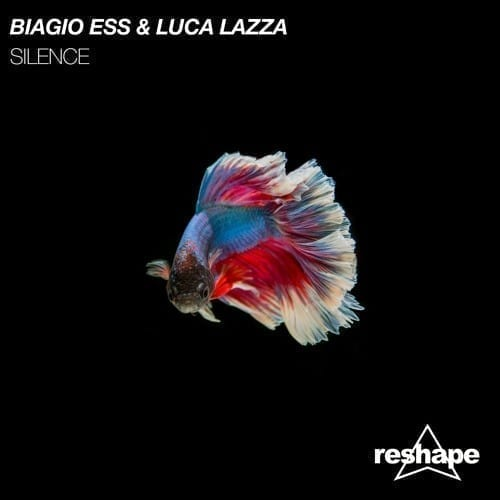 biagio_ess_luca_lazza