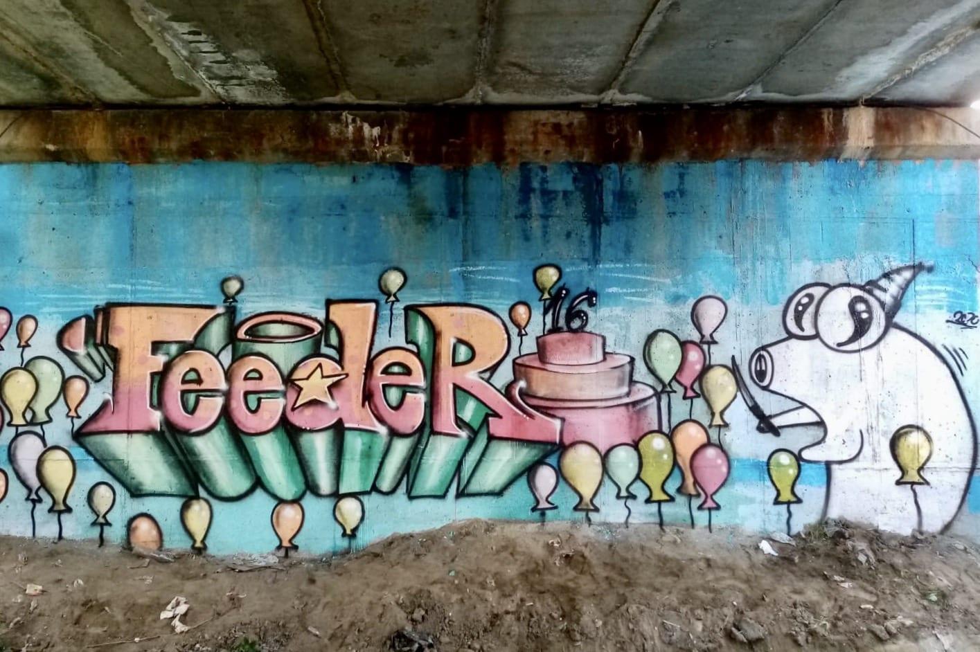 2020 AEUL x feeder.ro