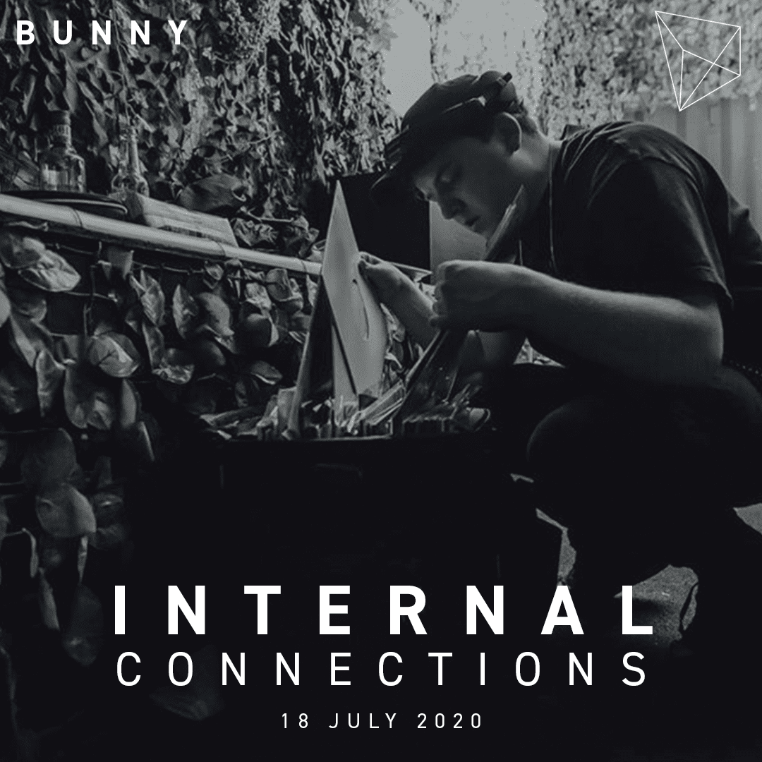 Bunny Internal Connections part 2