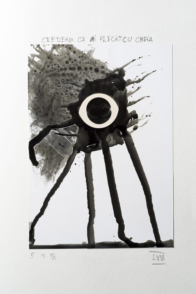 DIPLOMA Viewing Rooms prezintă o colecție de artă fotografică îngrijită de Alex Gâlmeanu