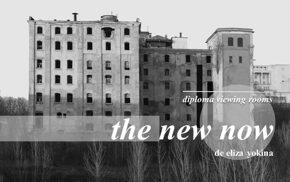 DIPLOMA Viewing Rooms // The New Now,o colecție de lucrări de arhitectură îngrijită de Eliza Yokina