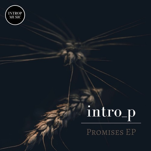 "Intro_p is back with 2 brilliantly soothing tracks for his 9th EP called ""Promises"""