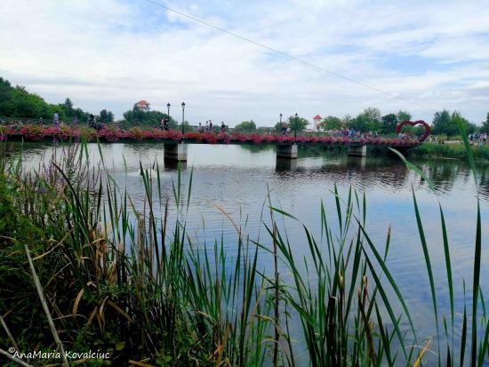 Parcul Natural Comana – idei de week-end