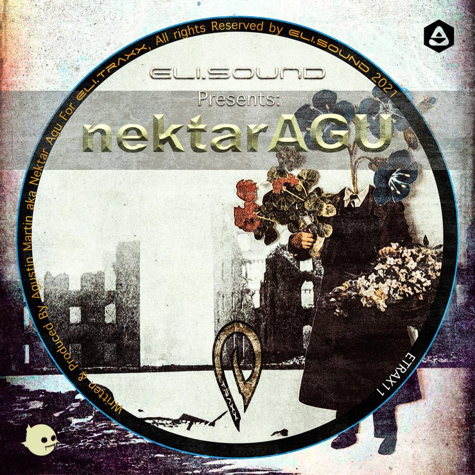 Nektar Agu - Diva (Dani Labb in DUB) [Eli sound] 01