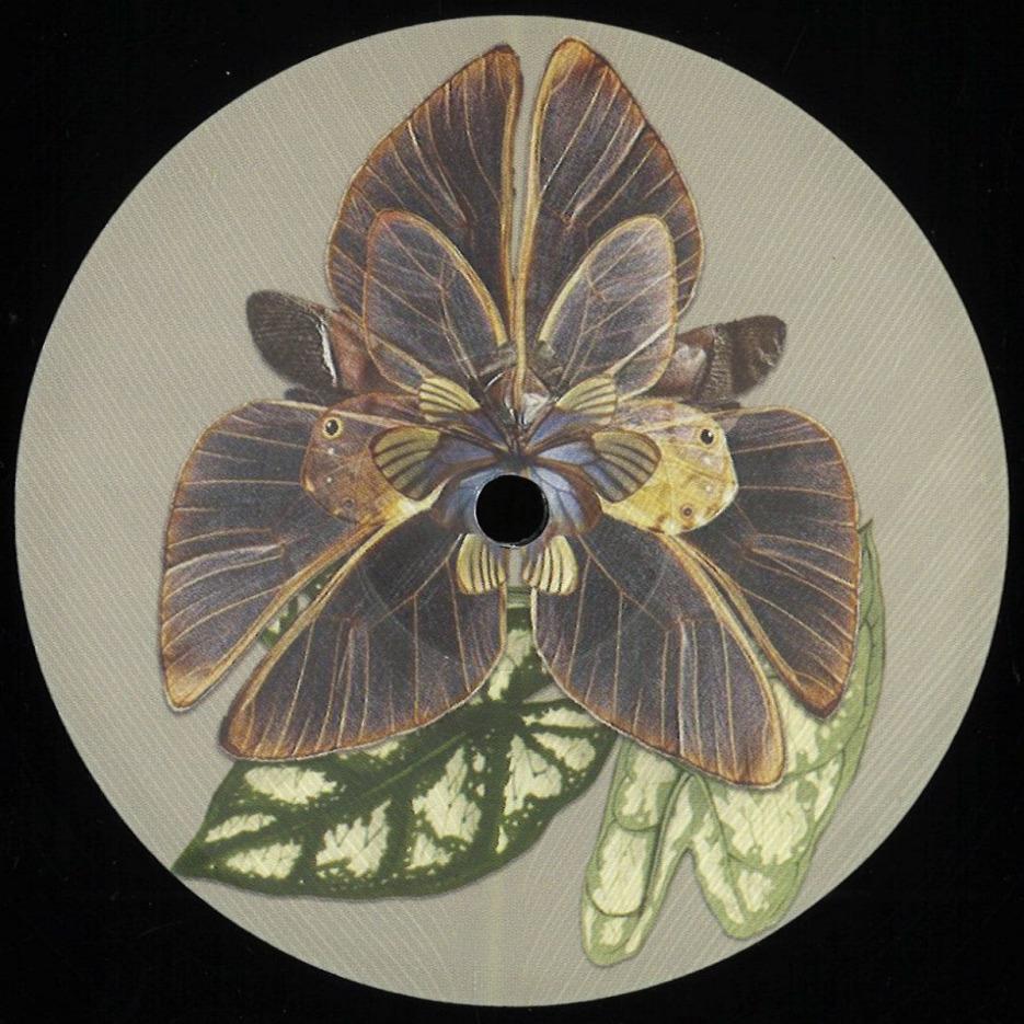 Various (Vlad Arapasu, Tripmastaz Enterprises, Petit Batou, Chrivu) - ENFASI002 [Enfasi Records] 01