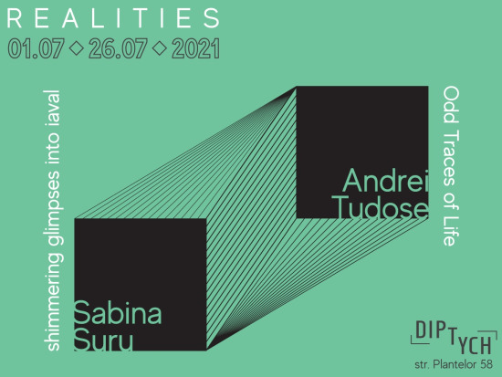 Realities - expozitie Sabina Suru si Andrei Tudose-626876bd
