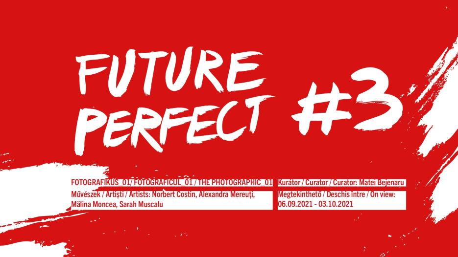 Future Perfect #3 / Viitor Anterior #3