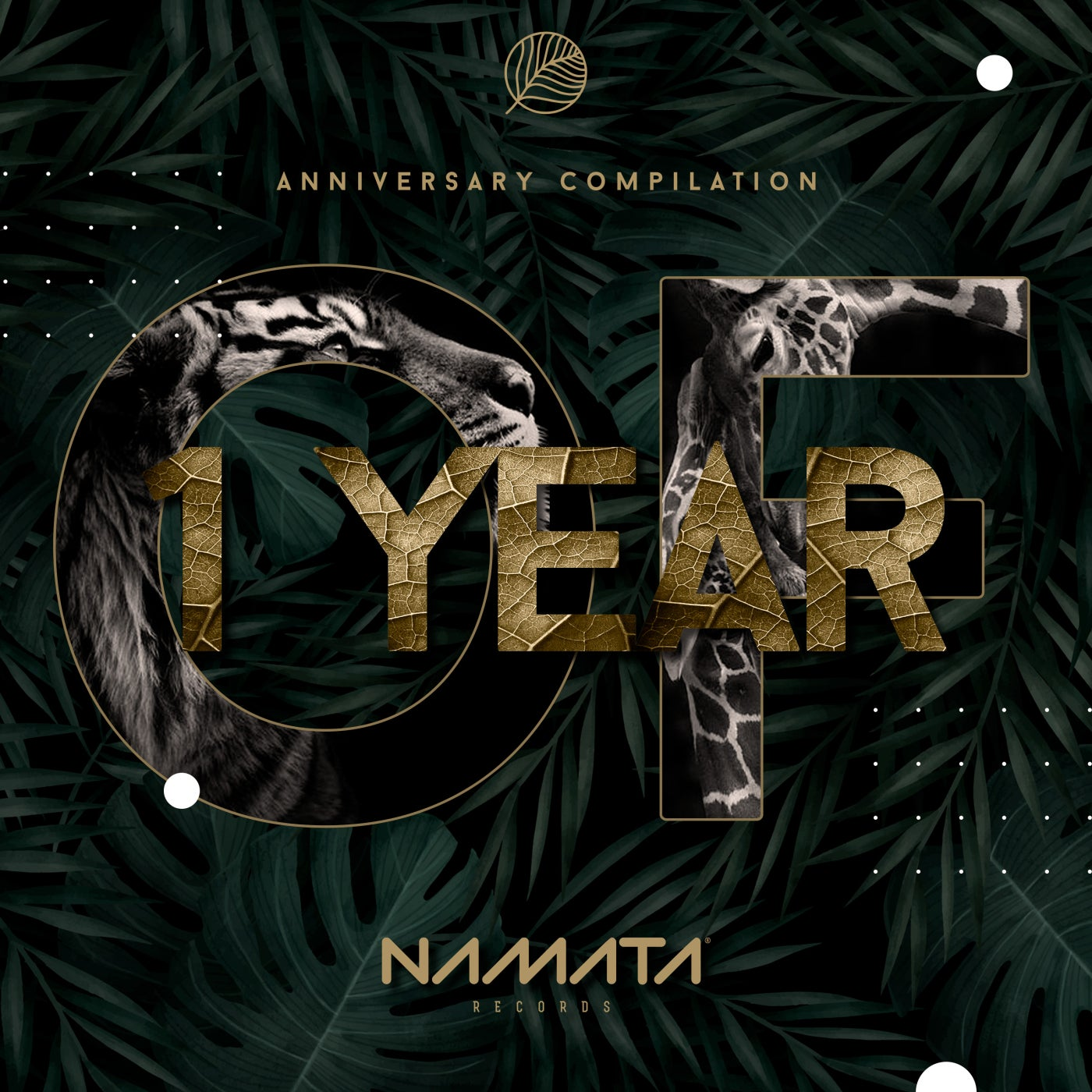 Namata Records - VA